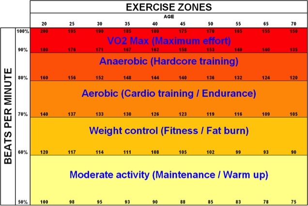 heart rate zones for fat burning workouts