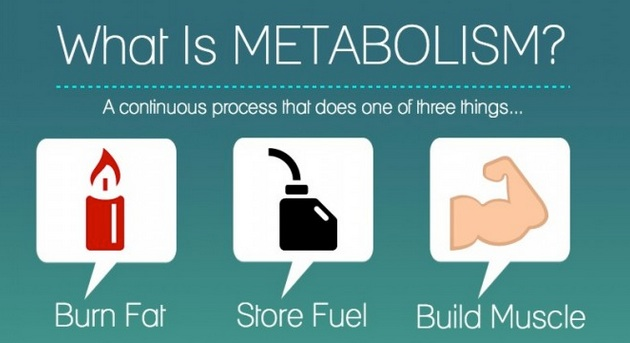 boost metabolism with food and exercise